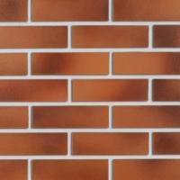 Фасадная клинкерная плитка Roben DARWIN NF 38 Красно-коричневый гладкий